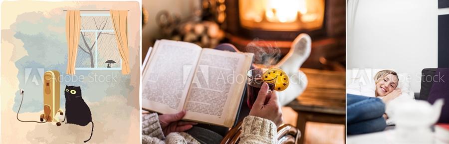 pisica calorifer lectura foc centrale termice