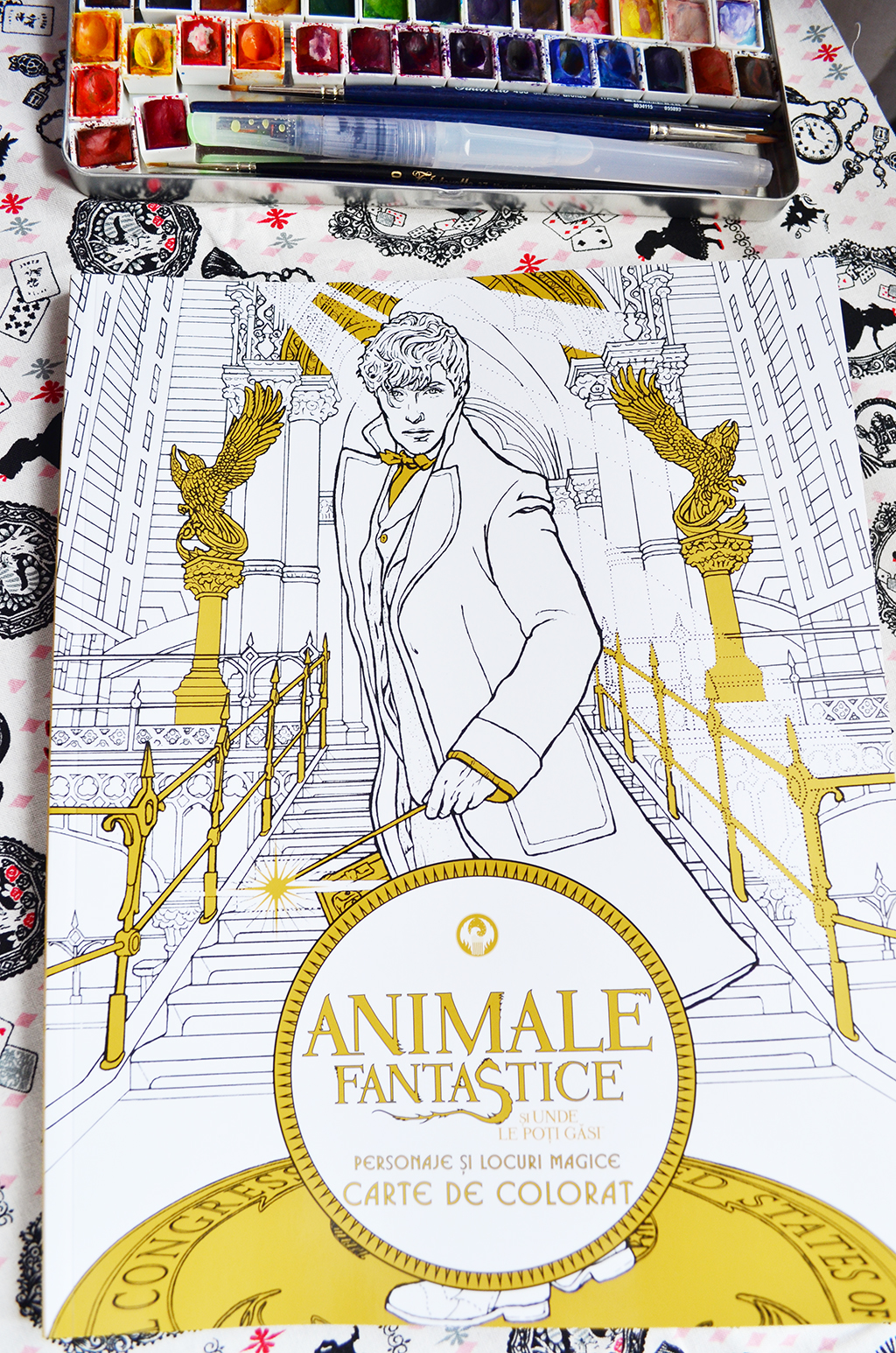 carte de colorat animale fantastice newt scamander