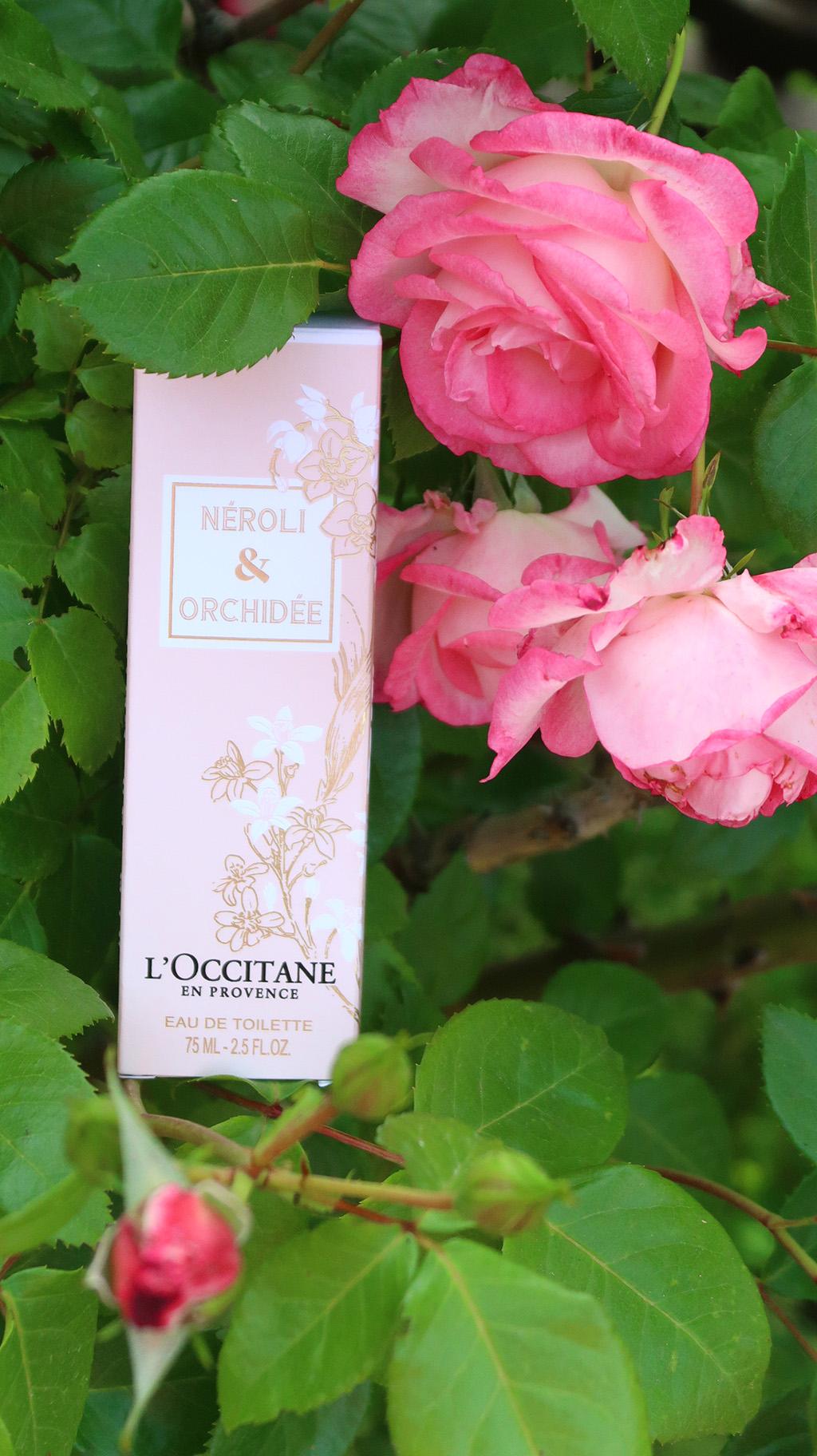 recenzie parfum neroli orchidee l'occitane review perfume