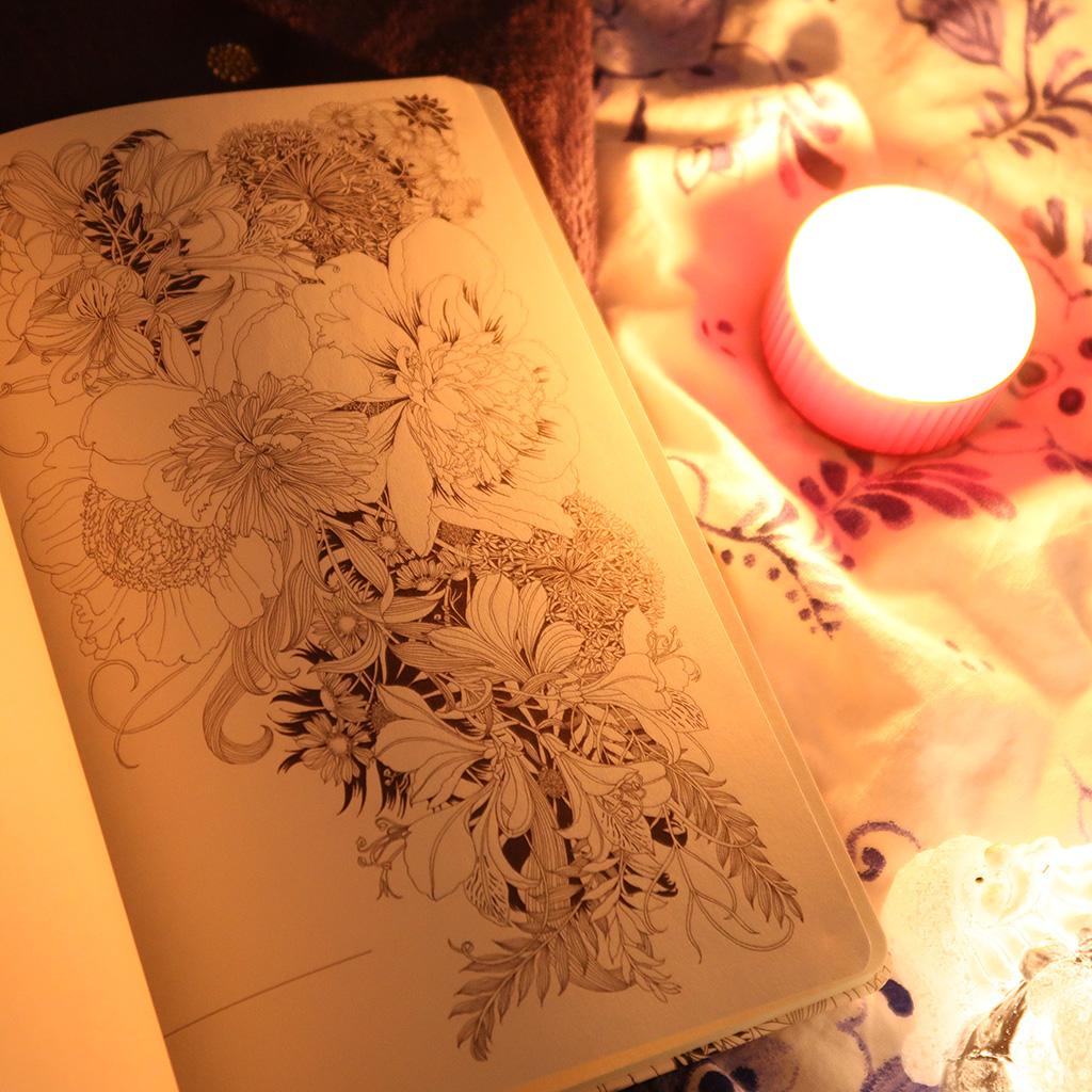 agenda floribunda interioor ilustratii carte colorat