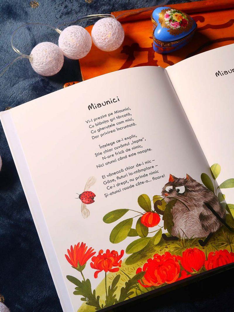 ultima comanda de pe libris - poezii cu pisici si inspiratie culinara pentru salate - 01