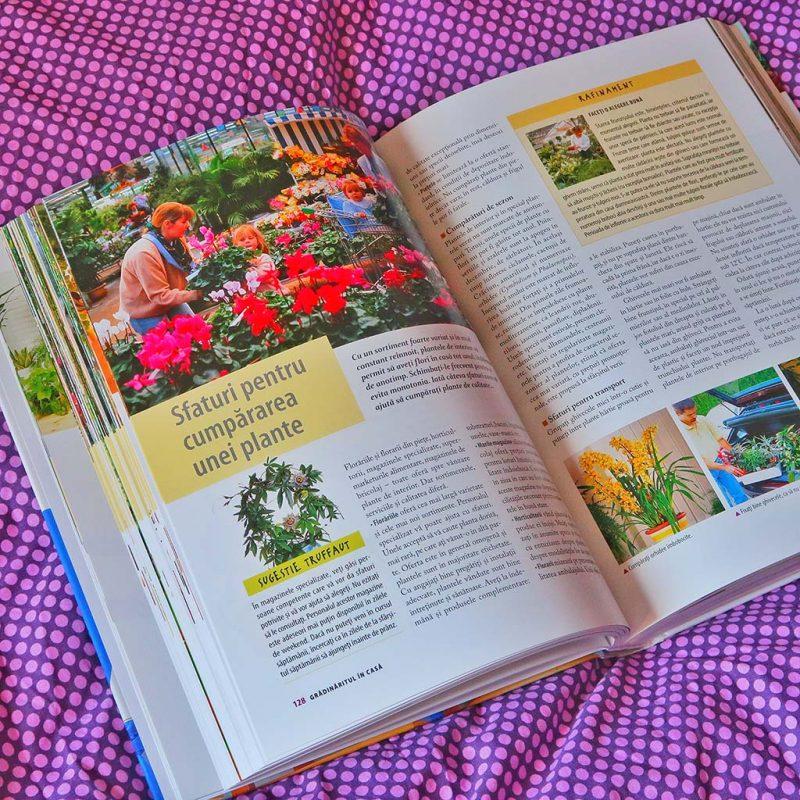 carti cartepedia hobby pentru zilele de vara scoala de desen portrete circul noptii printesa lupilor plante interior apartament